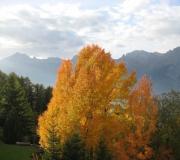 Herfst rond La Buche
