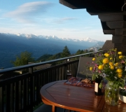 Uitzicht in de zomer vanaf terras van Chalet la Buche