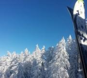 Sneeuw en ski's